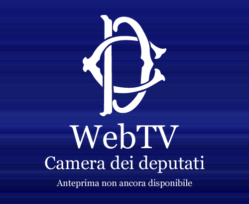Lo streaming in parlamento for Parlamento diretta tv